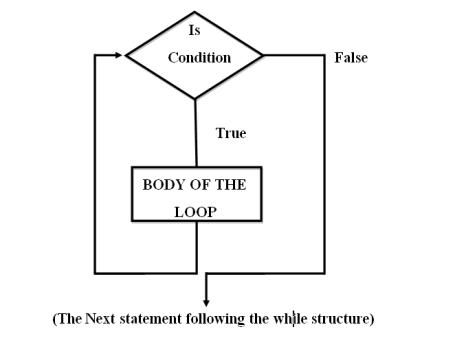 for loop c++