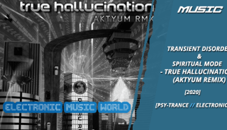 music_transient_disorder__spiritual_mode_-_true_hallucination_aktyum_remix