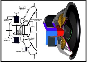 How Stereo Speakers Work | Car Stereo Technical Information | Automobile Audio and Electronics