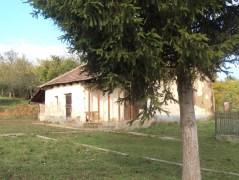 litka (11)