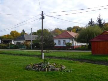 litka (66)