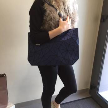 hiver 2016-2017 (sac bleu )