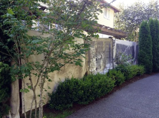 spraying fence stain 98039