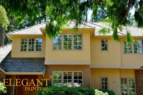 bellevue painting contractors red