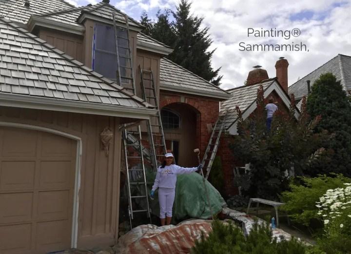painters of sammamish
