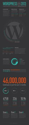 WordPress Infographic For 2013