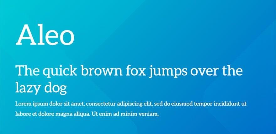 best-web-fonts-31