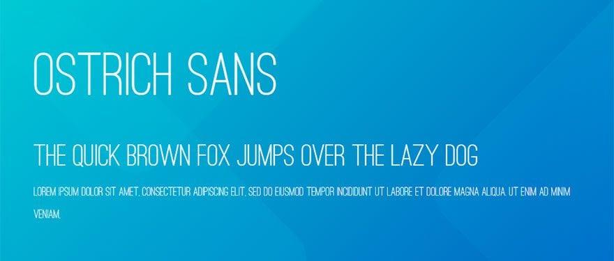 best-web-fonts-34