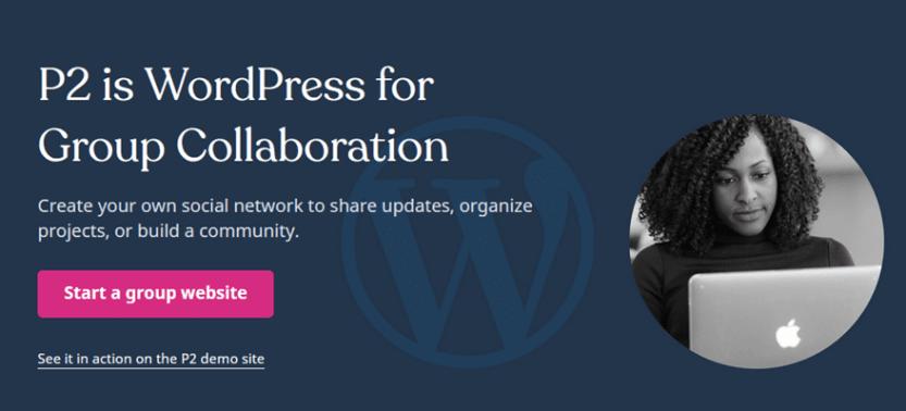 p2 website header