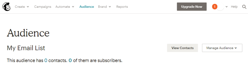 A new Mailchimp audience.