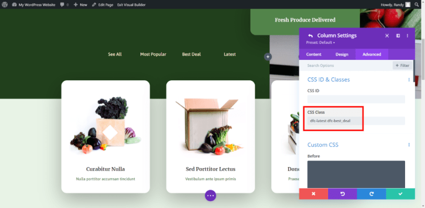 Another Divi Filter Example