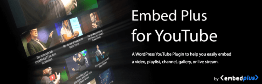 The Embed Plus for YouTube plugin