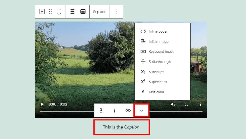 Video Block Caption Options