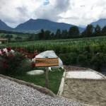 Agrilife a Comano: la realizzazione di un sogno