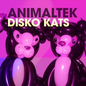 Animaltek – Disko Kats