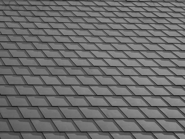 image of roof shingles