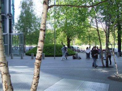 Trees interspersed within the pavement provide shade and make the space more useable on hot summer days.