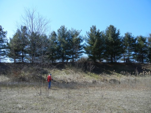 Existing berm with trees create a natural buffer even for 3-story building.