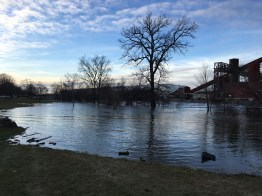 Moores Park stores flood waters.