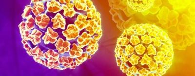 papilloma virus non siamo sole