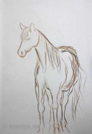 Skizze Pferd 1