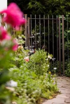 Gartentor und Zaun Padua unbeschichtet