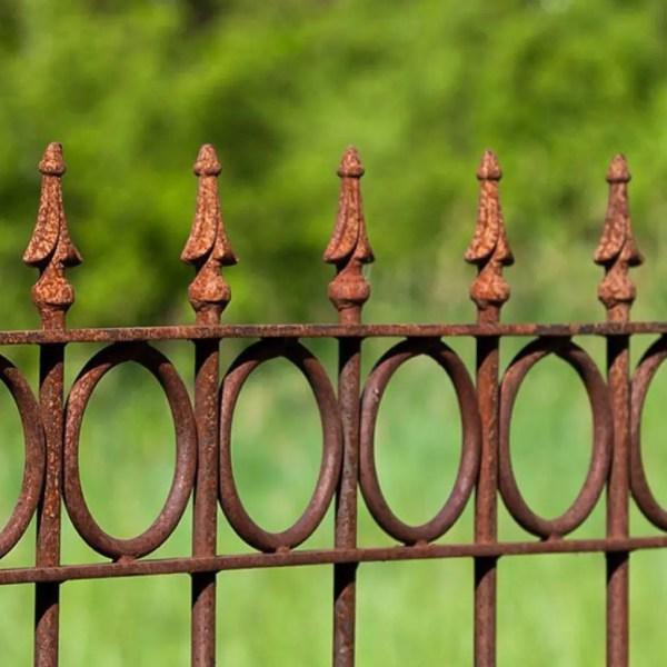 Geschlossener Ringdekor und Zaunspitze Pinie in Edelrost
