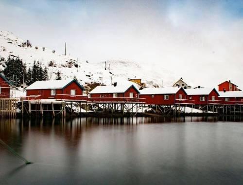 Tornare alle Isole Lofoten