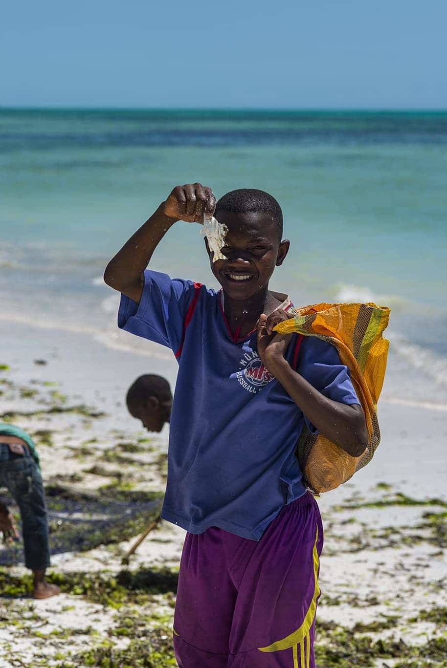 Che clima c'è a Zanzibar