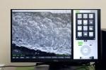 電子顕微鏡(SEM)