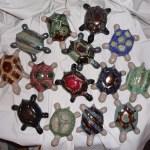 regroupement de tortues de salon © Michèle Ruffin