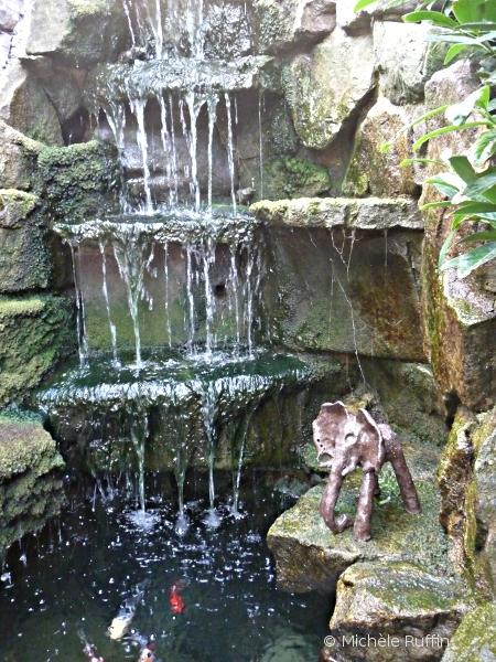 Dali01 elephant alsacienne fasciné par la cascade !