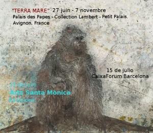 """expo Miquel Barcelo - """"Terra Mare"""" palais des papes à Avignon"""