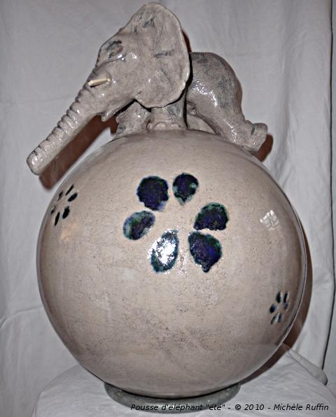 """""""Pousse d ' éléphant 'été' """" © 2010 - Michèle Ruffin"""