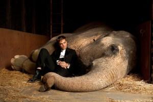 de-l-eau-pour-les-elephants-de-francis-lawrence