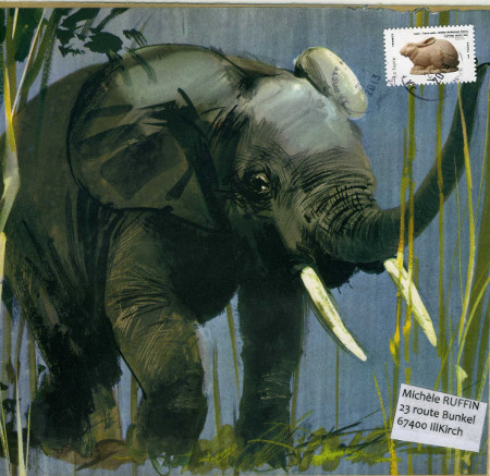 elephant 385