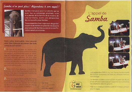 elephantD08