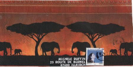 elephantD10