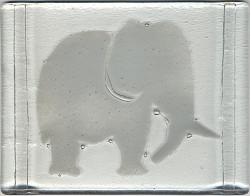 elephant_blanc___