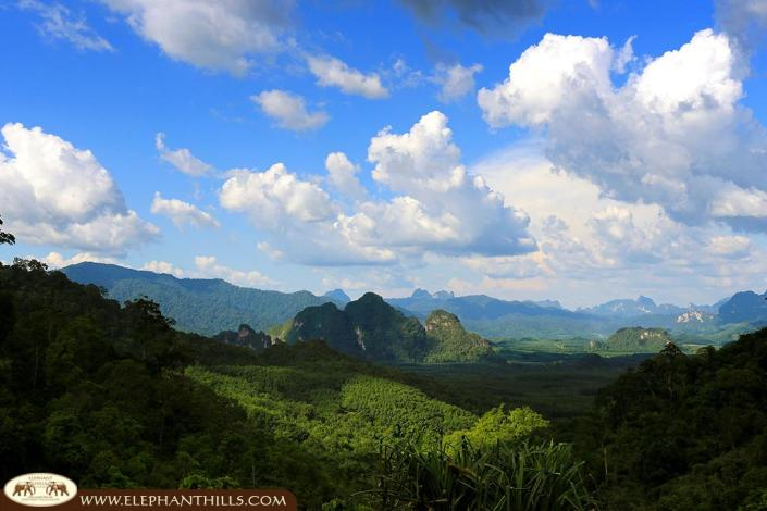 Khao Sok National Park part of Southern Thailand's rainforest