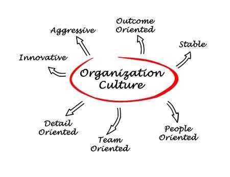 Focus on organization culture – hit a home run