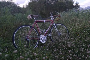 6458 Peugeot Anjou Passepartout 01