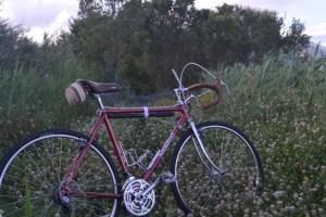6489 Peugeot Anjou Passepartout 33