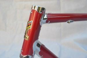 6671 Elessar bicycle 48