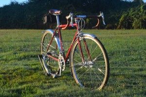 6727 Elessar bicycle 289
