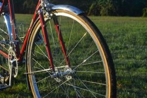 6739 Elessar bicycle 293