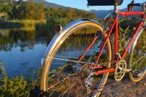 6780 Elessar bicycle 160