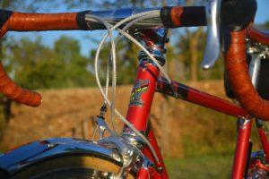 6788 Elessar bicycle 310