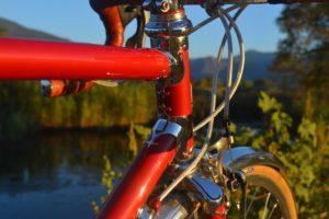 6841 Elessar bicycle 165