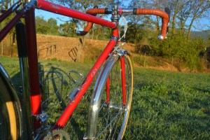 6915 Elessar bicycle 276